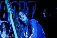 Dust Bolt, Freakout Festival