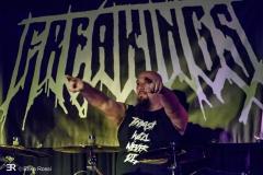 Freakings, Freakout Festival