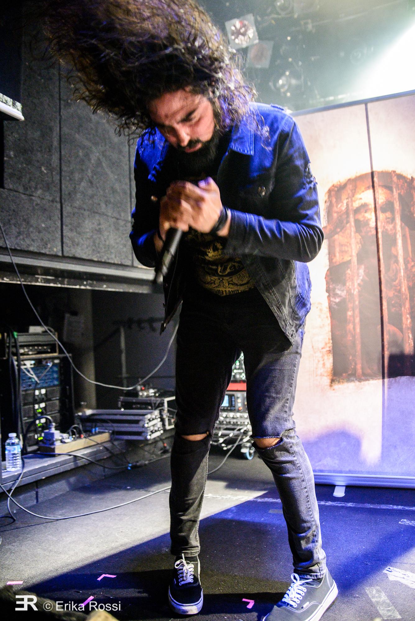 Voice Of Ruin - Le Grillen