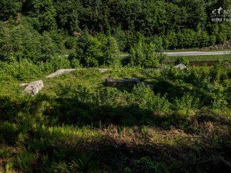 Birchiburg