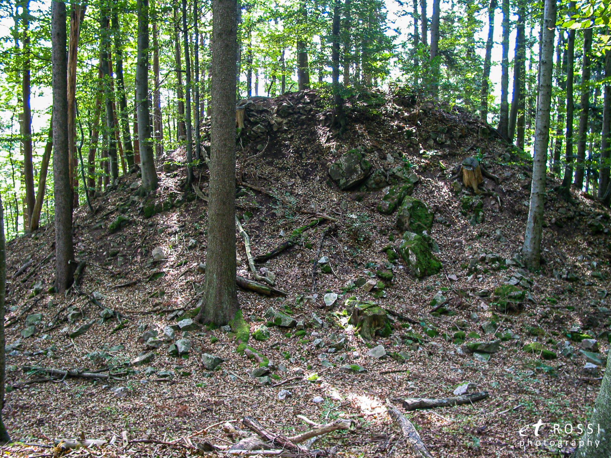 Grueneck 0001 - Burg Grüneck