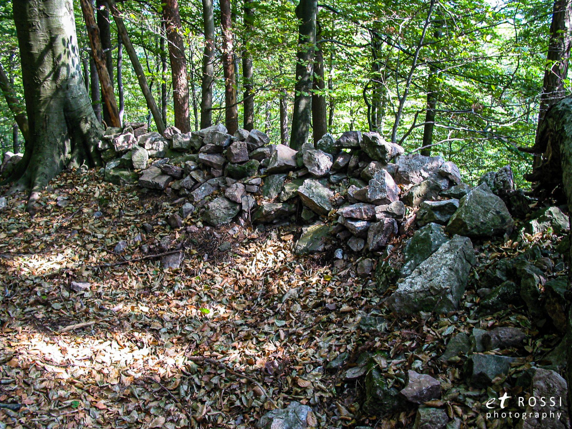 Grueneck 0007 - Burg Grüneck